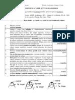 13-Pratica-Identificacao_Repteis