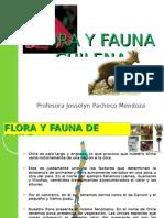 Flora y Fauna Chilena