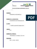 NORMA  TORRES TRABAJO 3 PARCIAL (PROGRAMAS  EN  MODELO  DE  6D´S)