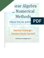 Linear Algebra and Numerical methods Practical Programs by Dk Mamonai