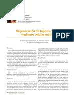 231 CIENCIA Regeneracion Tejidos Celulas Madre