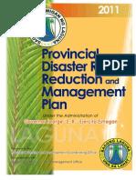 DRRM Plan - Laguna (1)