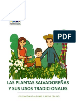 PlantasSalvadorenas-UsosTradicionales