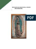 Descubrimientos en El Manto de La Virgen de Guadalupe