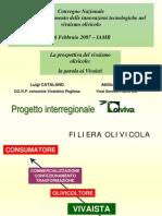 Le Prospettive Del Vivaismo Olivicolo La Parola Ai Vivaisti