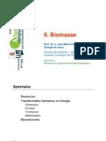 6 Biomasse