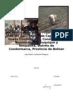 Plan de Negocio Frijol Canario-Condormarca