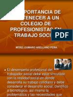 Perfil Del Trabajador Socialt
