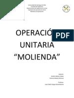 Informe de La Molienda 2.0