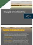 Energia No Ecossistema