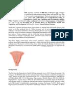 Reproductive Health Bill