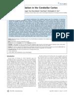 Daniel O. Kellett et al- Memory Consolidation in the Cerebellar Cortex