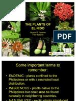 Ferreras 2011 - The Plants of El Nido, Palawan, Philippines