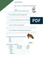 Exerciţii pentru înţelegerea textului