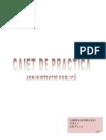 CAIET DE PRACTICA