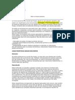 Artigo Técnico - Mofo na Indústria Alimentícia