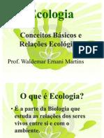 Ecologia Relacoes+Ecologicas Ciclos(1)