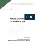 FÓSILES, CULTURA E HISTORIA DE LA VIDA