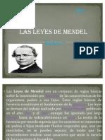 Las Leyes de Mendel