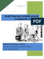 Proiect - Audit Financiar Contabil Privind Imobilizarile Corporale