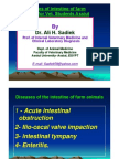 Diseases of the Intestine of Farm Animals by Ali Sadiek Vet. Med. Assiut