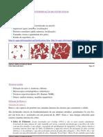 ESTADO SOLIDO_Determinação Estruturas_v181111