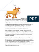 La Historia de La Vaca