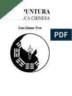 Acupuntura Classica Chinesa Tom Sintan Wen