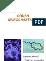 Tema 26. Diapositivas Orden Spirochaetales
