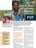 Lagudah, Griffiths - 2009 - Gene for Wheat Rust Resistance Discovered-Annotated