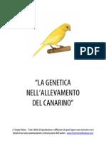 Genetica Del Canarino