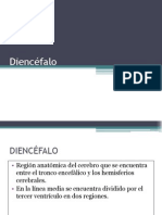 4. Diencéfalo ip
