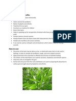 Medicinal Plants