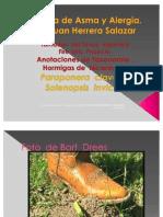 Anotaciones Formicidos Nicaragua Fire Ant Ira Parte Jhs