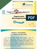 presentacinmicroseguros-090422181621-phpapp02
