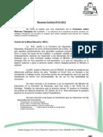 Resumen Confech 07-01-2012