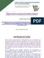 Ponencia Del Informe