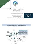Amino Acids Catabolism International University of Africa, Atif Hassan Khirelsied