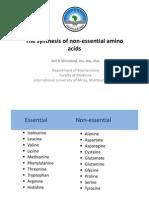 Amino Acid Bio Synthesis 2012, International University of Africa, Atif Hassan Khirelsied