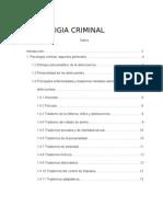 Psicologia Criminal (2)