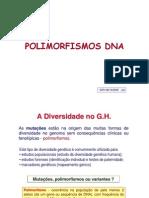 Polimorfismos DNA_aula (o trabalho não é meu)
