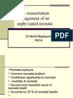 Mohd Maghayreh Asphyxia