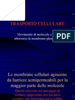 trasporto_attraverso_membrana[1]