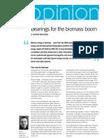 IIED Biomass Energy