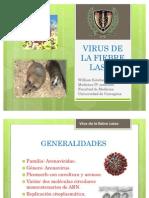 Virus de La Fiebre Lassa