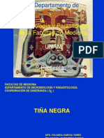 4.TIÑA NEGRA