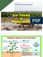 Air Tanah Dan Tanaman