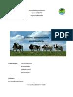 Seminario Industria Lactea Doyhamberry Fredes Machuca Sendra
