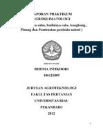 agroklimatologi praktikum rhoma istikhori