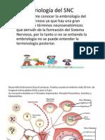1. Personal Embriología del SNC